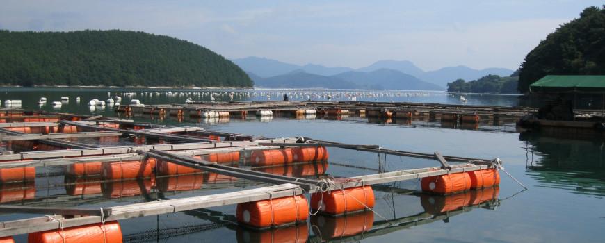 aquaculture santa barbara