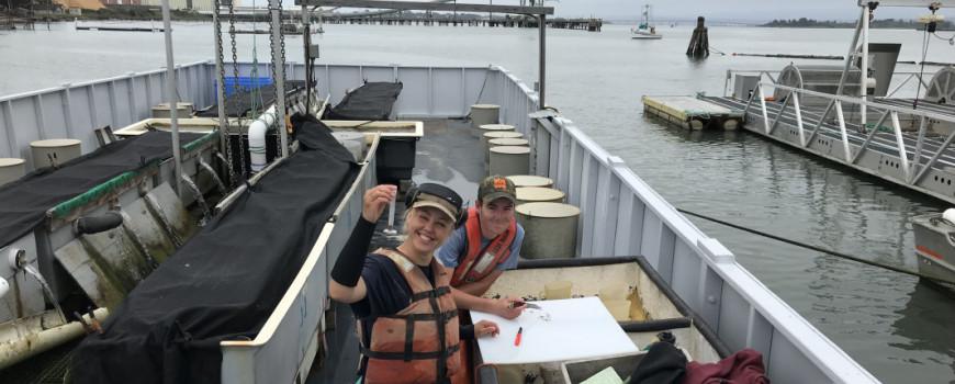 happy aquafarmers measuring baby oysters
