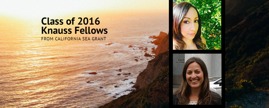 Class of 2016 Knauss Fellows