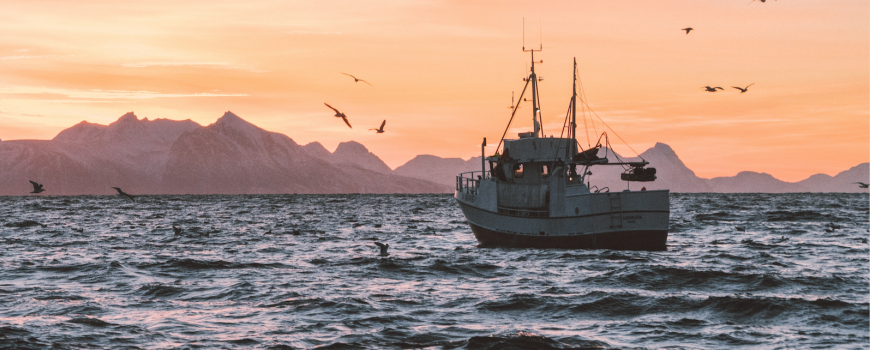 fishing boat - knut troim via unsplash