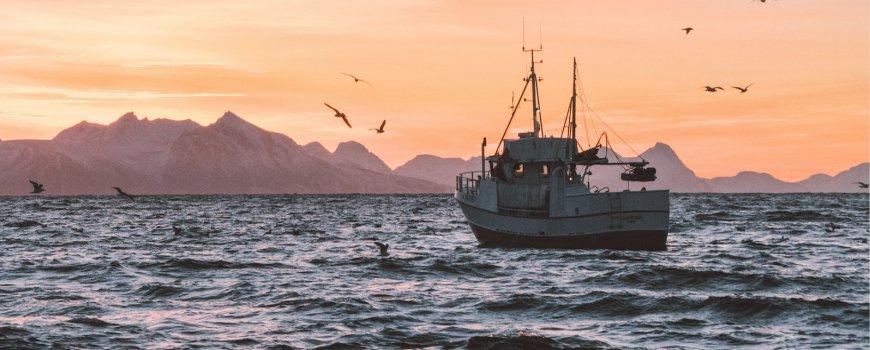 fishing boat - knut troim via unsplash