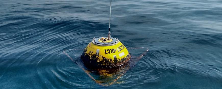 CDIP buoy