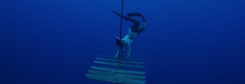 Flo diving
