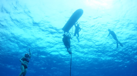 Flo free diving in Hawai'i while training how to use a wave glider with the team from the University of the Philippines.