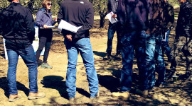 A Delta Stewardship Council focus group. The Sacramento-San Joaquin Delta is part of the largest estuary on the west coast of North and South America.