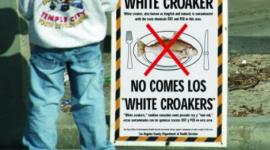 Man standing next to an advisory sign for white croaker