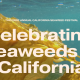 kelp background overlaid iwth text, celebrating seaweeds in california