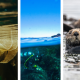colorful header with images of marine and coastal-related science