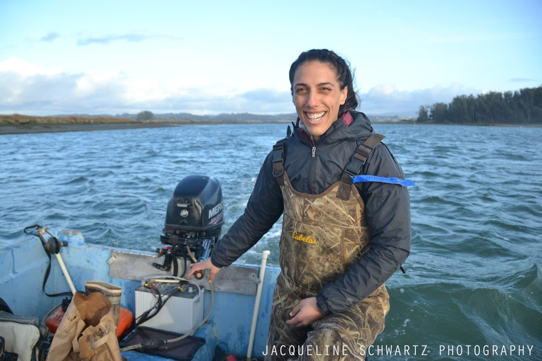 Kat's dissertation was focused on the loss and recovery dynamics of coastal foundation species in Elkhorn Slough, an estuary located in Monterey Bay, California. Here she is driving the Elkhorn Slough Reserve boat on one of those cold field days.