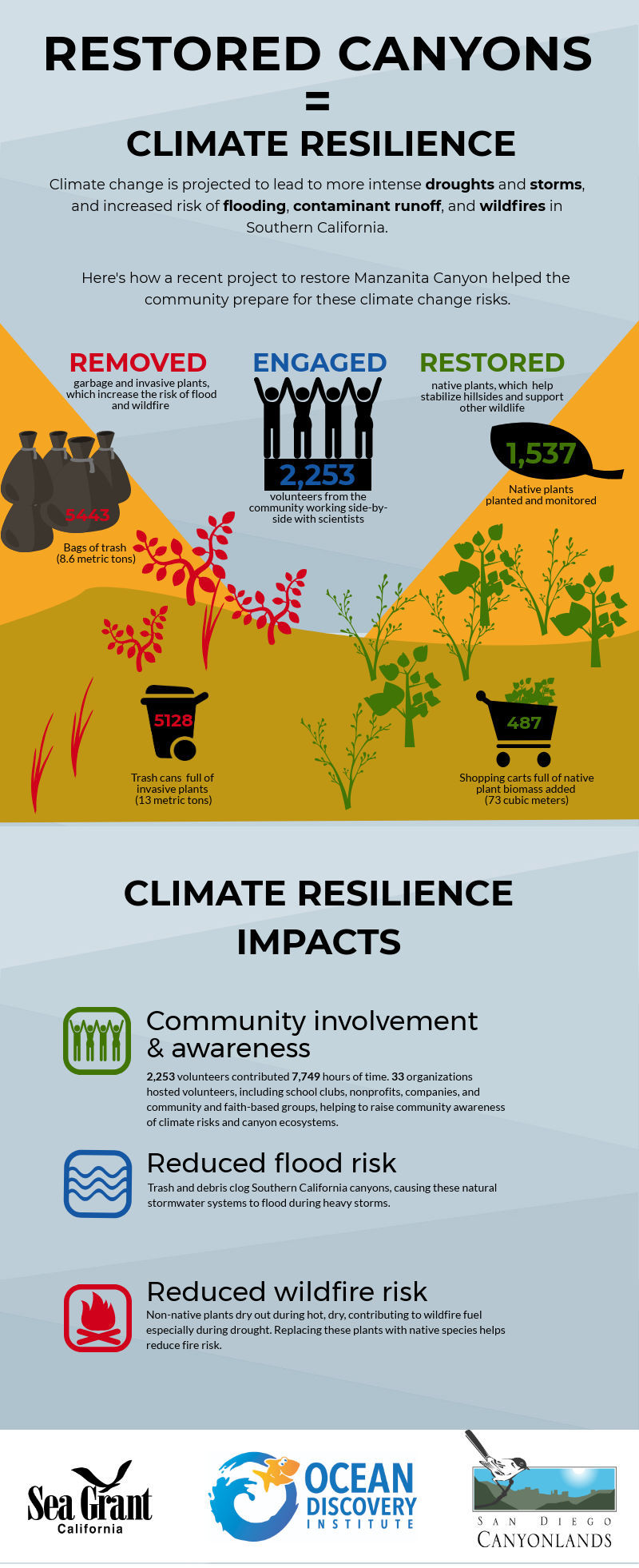 Infographic on canyon restoration and climate resilience. Click to view full with transcript